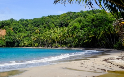 Preview: Best Time to Travel Dominica