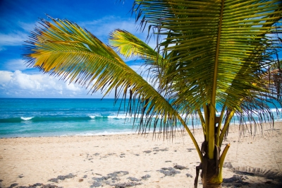 Preview: Best Time to Travel Puerto Rico