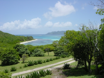 DSC06711, Petit St. Vincent (PSV), Winward Island, The Grenadines, Caribbean (Lyn Gateley)  [flickr.com]  CC BY  License Information available under 'Proof of Image Sources'