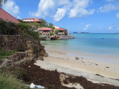 Preview: Best Time to Travel Saint-Barthélemy