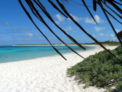 Loblolly Beach, Anegada, BVI (Kathleen Tyler Conklin)  [flickr.com]  CC BY  License Information available under 'Proof of Image Sources'