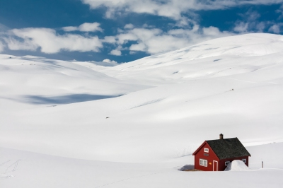 Norwegian snow desert (Markus Trienke)  [flickr.com]  CC BY-SA  License Information available under 'Proof of Image Sources'