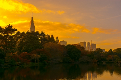 NTT Docomo Yoyogi Building and Shinjuku Skyscraper (Yoshikazu TAKADA)  [flickr.com]  CC BY  License Information available under 'Proof of Image Sources'