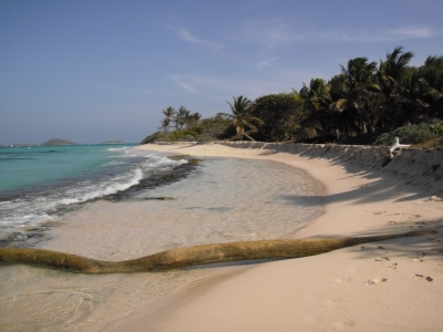 Preview: Best Time to Travel St. Vincent and The Grenadines