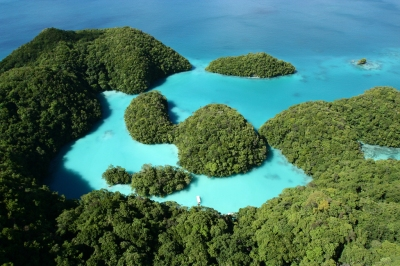 Preview: Best Time to Travel Palau