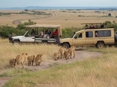 Preview: Best Time to Travel Serengeti