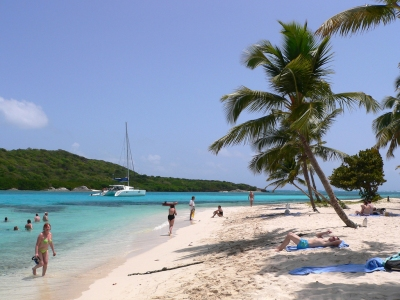 The Beach at Tobago Cays (Lee Coursey)  [flickr.com]  CC BY  License Information available under 'Proof of Image Sources'