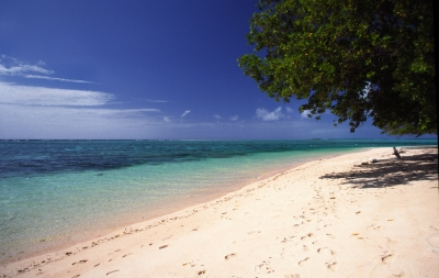 Preview: Best Time to Travel Marshall Islands