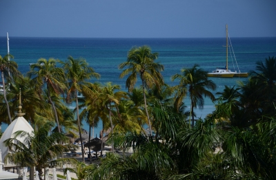 Preview: Best Time to Travel Aruba